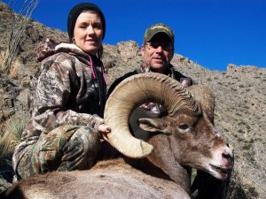 big-horn-sheep-6