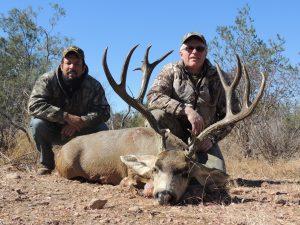 mule-deer-mexico-1