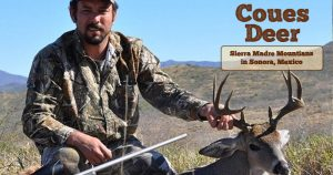 slider-coues-deer