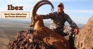 slider-ibex