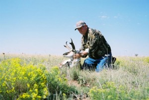Antelope060